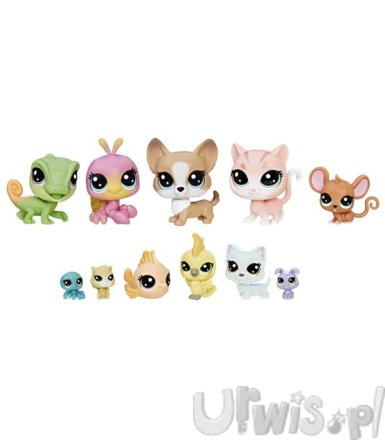 Littlest Pet Shop, Home Buddies Pack